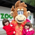 Zoo in Belfast